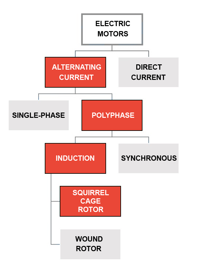 Figure 1: General classification of electric motors.