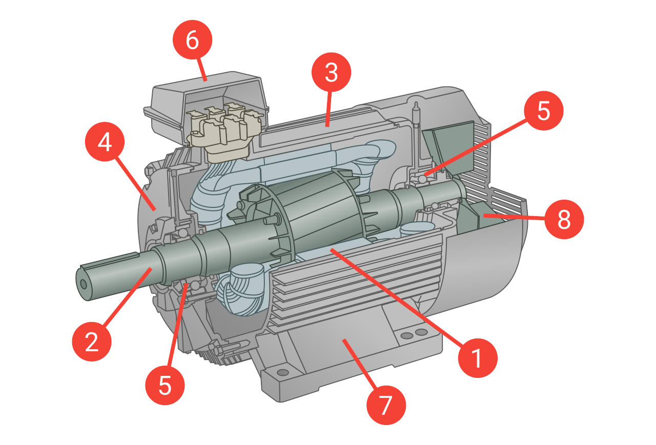 Figure 2: Main components of an electric induction motor with squirrel cage rotor.