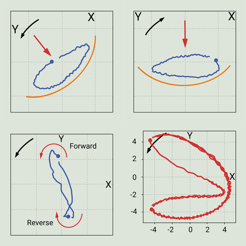 Figure 10: Typical orbits of presence of preload and rub.